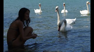 На природе. Побережье Черного моря.(Мое видео о природе, животных, насекомых на черноморском побережье., 2015-02-28T18:32:17.000Z)