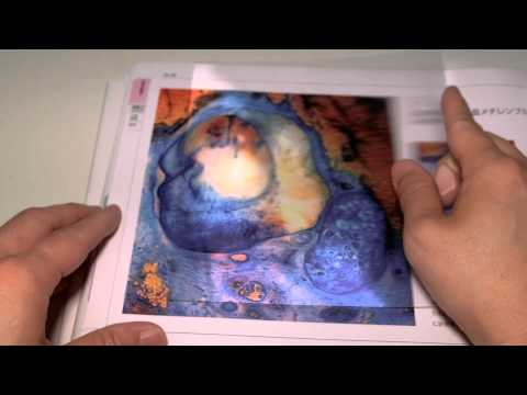 「レンチキュラーレンズで見る3D組織病理図鑑」の読み方・使い方