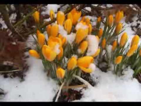 Первый день весны!