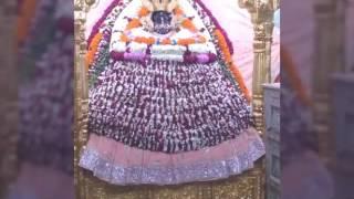 Mujhae Shyam Teri Darkar h, Tu hi Sanvrae meri Sarkar h....( Lyrics by Shyam Premi Sanjay Mittal Ji)