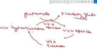 VITAMIN K-CHEMISTRY, FUNCTIONS, DEFICIENCY, CLOTTING