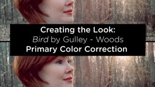 Creating the Look: Woods - Part 2: Primary Color Correction -  DaVinci Resolve 9