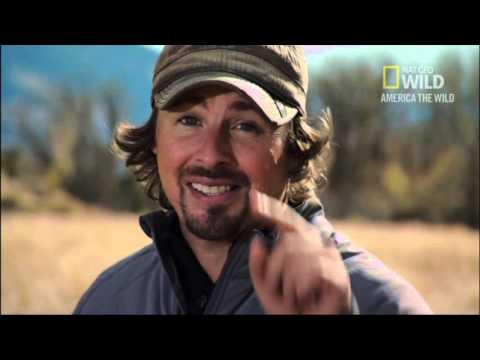 Nat Geo Wild Yellowstone Spring