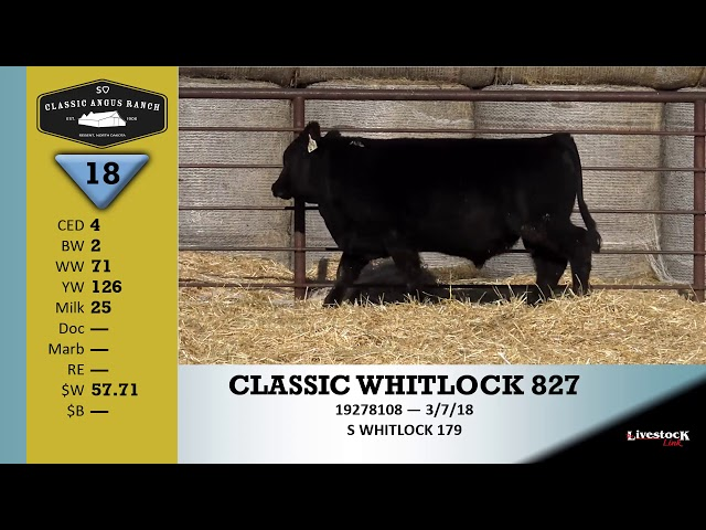 Classic Angus Ranch Lot 18