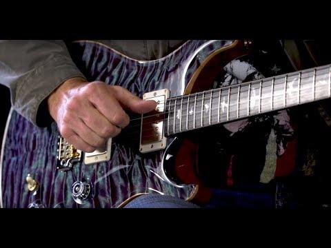 PRS Guitars Wildwood Guitars Private Stock Dealer Limited DGT 594  •  SN: 17245174