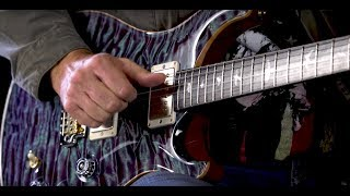 Baixar PRS Guitars Wildwood Guitars Private Stock Dealer Limited DGT 594  •  SN: 17245174
