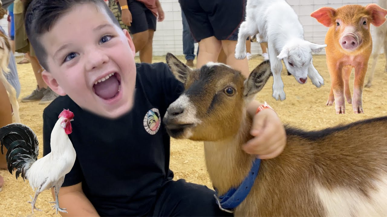 FEEDING FARM ANIMALS! CALEB and MOMMY LEARN ABOUT FARM animals at the KIDS PETTING ZOO at the FAIR!