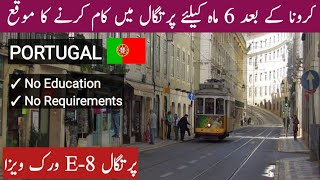 Portugal E8 Work Visa For Pakistan-India || Residence Seasonal Work Visa || Every Visa || Hindi/Urdu