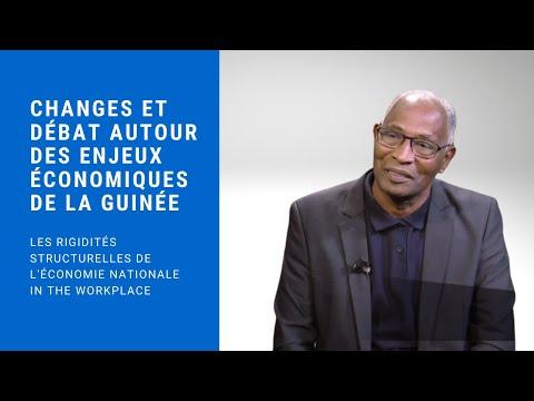 UDRG: Échanges et débat autour des enjeux économiques de la Guinée