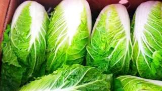 ПЕКИНСКАЯ КАПУСТА ПОЛЬЗА И ВРЕД | китайская капуста польза и вред, пекинская капуста свойства