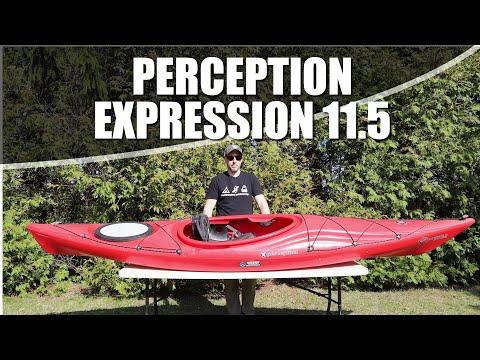 Perception Expression 11.5
