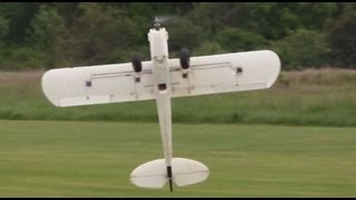 Multiplex FunCub 3D Flying