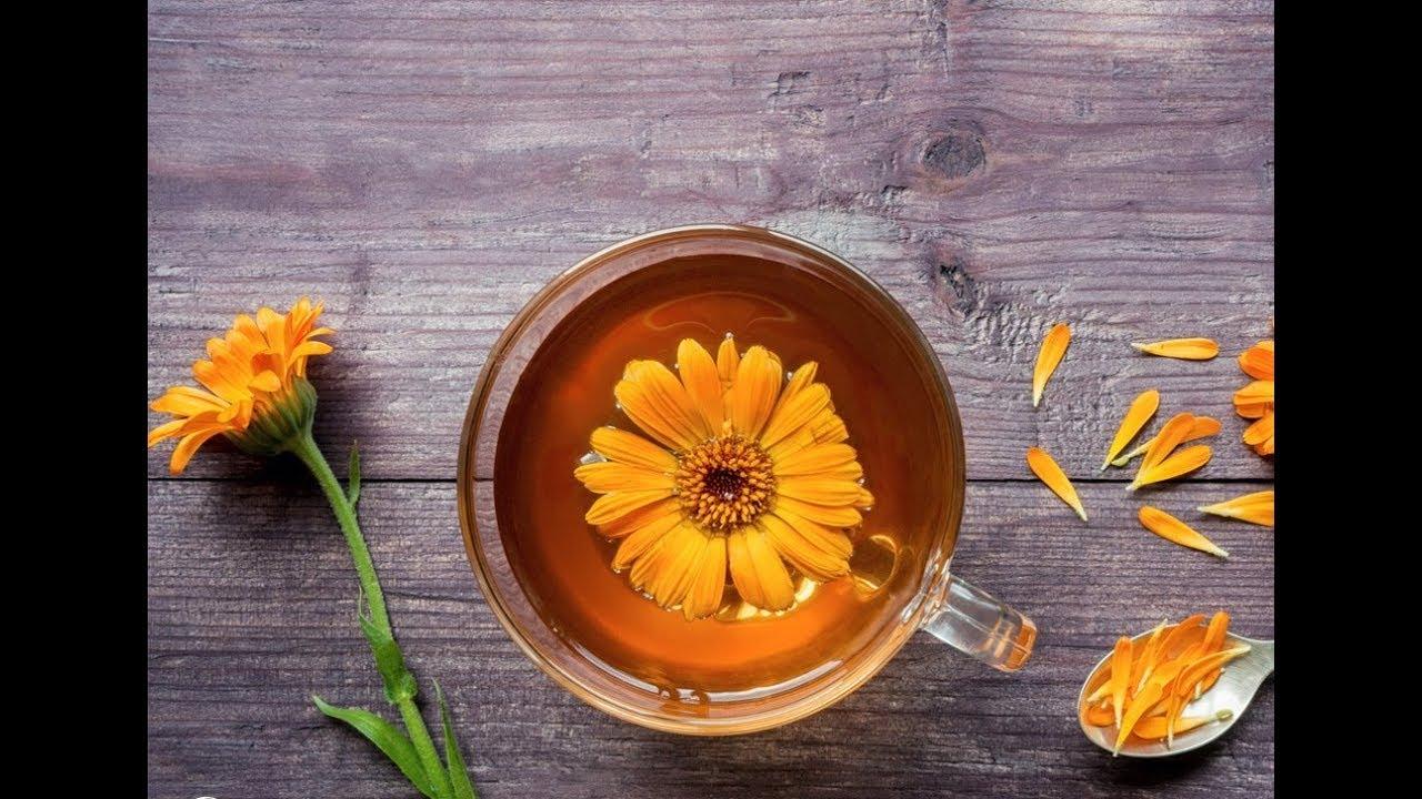 Цветок красоты и здоровья - КАЛЕНДУЛА или НОГОТКИ
