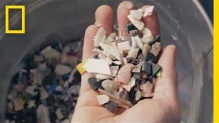 Transforming Ocean Trash Into Beautiful Art | Short Film Showcase