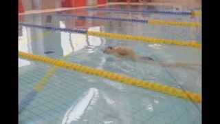 泳ぎの動作を確認してスキルアップにつなげる」 泳いでいるときに水をか...