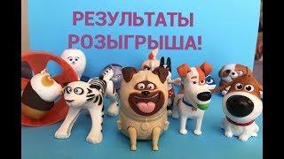 РЕЗУЛЬТАТЫ РОЗЫГРЫША! Тайная жизнь домашних животных 2