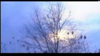 神鵰俠侶主題曲《天下無雙》MV