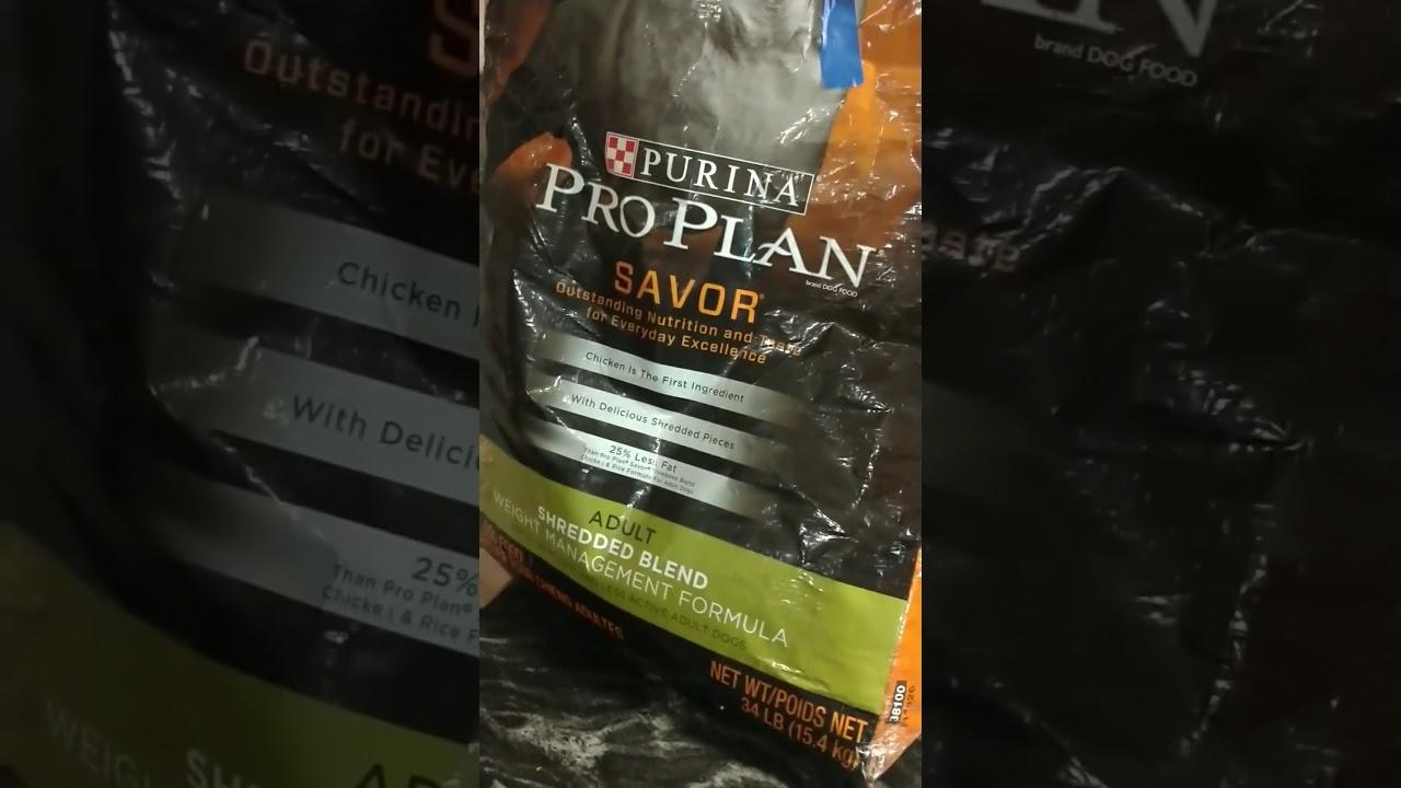 Purina Pro Plan dog food had maggots in the morsels
