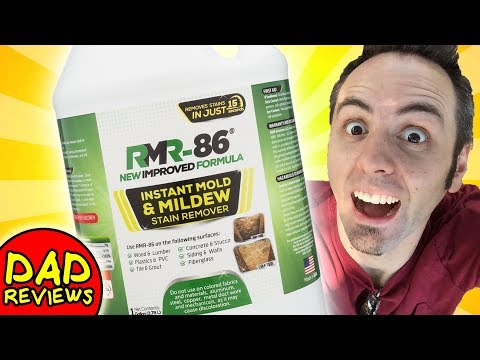 BEST MOLD REMOVER | Rapid Mold Remover RMR-86 Reviews & Test