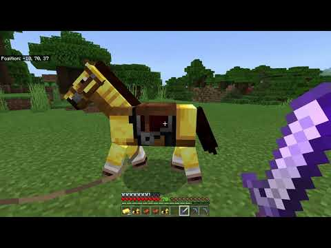 Name That Horse