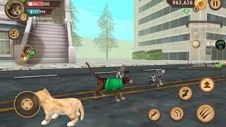 💰💰💰1.000.000💰💰💰 МОНЕТ В КЭТ СИМЕ /CatSim симулятор кота онлайн/ GAMES TV