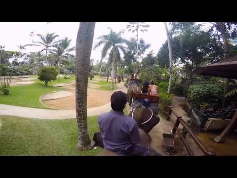 GLA Bali - Land of Discovery 2015 by Haley Lamb