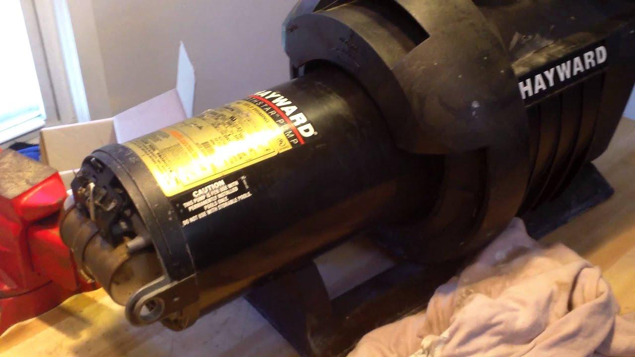 Hayward Northstar 3hp Pool Pump Bench Test Youtube