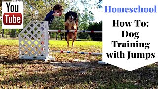 HomeSchooling Edition - Training Dogs - Agility & Jumping