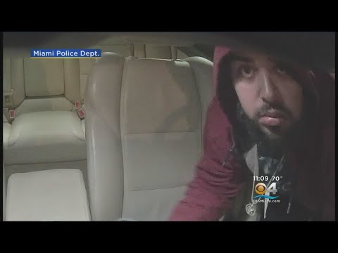 Miami Police Searching For Airbag Thief Caught On Victim's Dash Cam