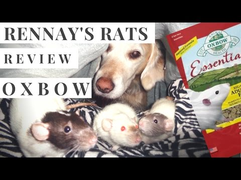 Rennay's Rat Review: Oxbow Adult Regal Pet Rat Food