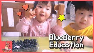 블루베리로 색깔 놀이 공부하기 ♡ 블루베리 먹을 때는 어떻게 먹어요? Learn colors with blueberry for kids | 말이야와아이들 MariAndKids