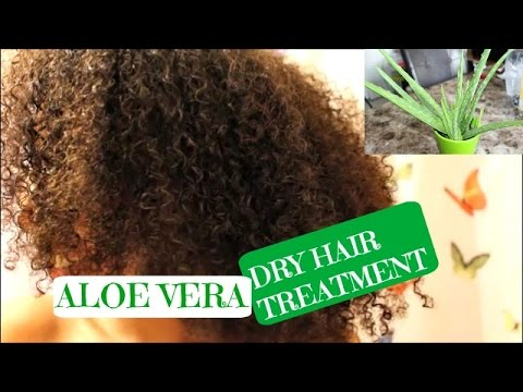 dry hair treatment hair aloe vera conditioning treatment for 29492