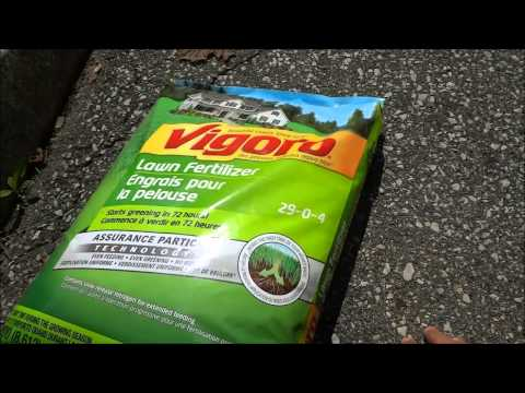 How To Fertilize Your Lawn-Tutorial For DIY Lawn Care