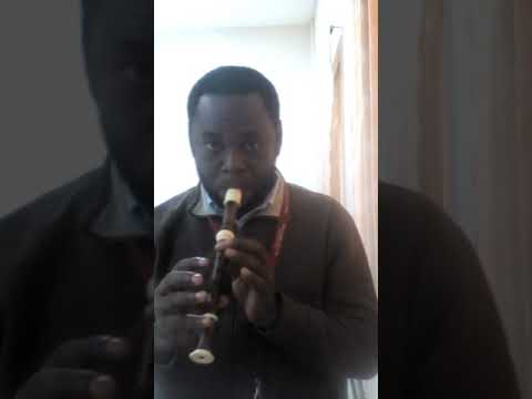 Invention No. 1 - Bach. Recorder Cover by Marymike Mordi