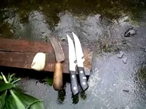 Pengujian Bambu Petuk (pring pethuk) ~ Test Sajam Daya Perlindungan (Kebal).