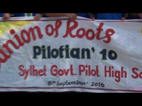 Reunion of Roots. Pilot 10 Batch - Part 1