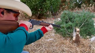 30-30 Rifle vs Christmas Tree 🎄How Many Shots Will it Take? | Gould Brothers