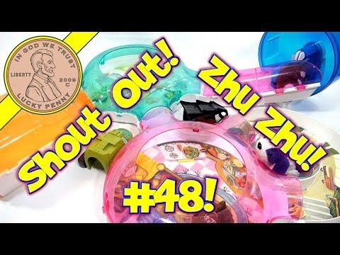 Shout-Out (Video #48) Zhu Zhu Pet Hamster Play Time!