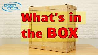 大きな箱が届いています!!中身はなんだろう?