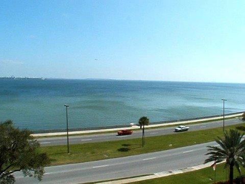 Bayshore Blvd Condo South Tampa, Florida