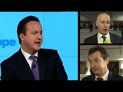 Cameron's EU referendum draws criticism from British MEPs
