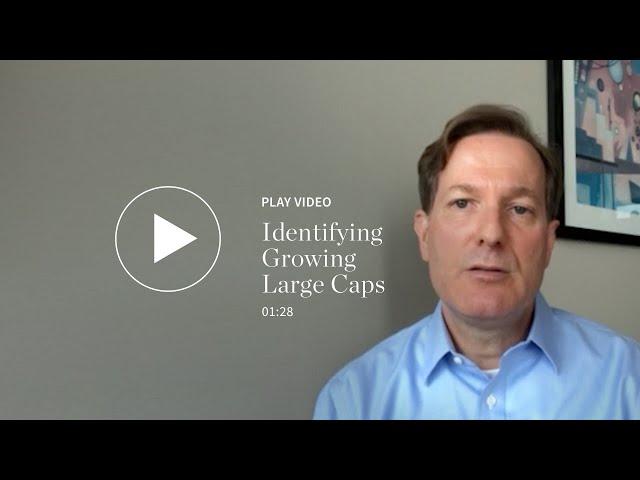 Identifying Growing Large Caps