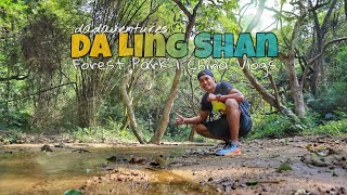 Travel China - Da Ling Shan Forest Park Dongguan China | Dadaventures China Vlog