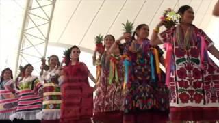 San Juan Bautista Tuxtepec - Flor de Piña - Guelaguetza 2016 (Función Matutina)
