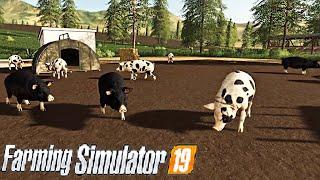 #61 - RECINTO SUINI -  FARMING SIMULATOR 19 ITA RUSTIC ACRES