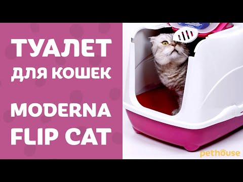 Закрытый туалет для кошек MODERNA FLIP CAT Large & Jumbo | обзор от Pethouse.ua