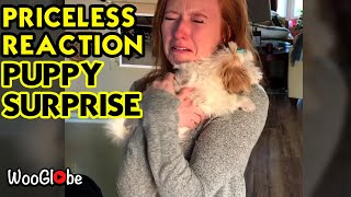 Emotional Wife Reaction To Puppy Surprise  Heartwarming Moments