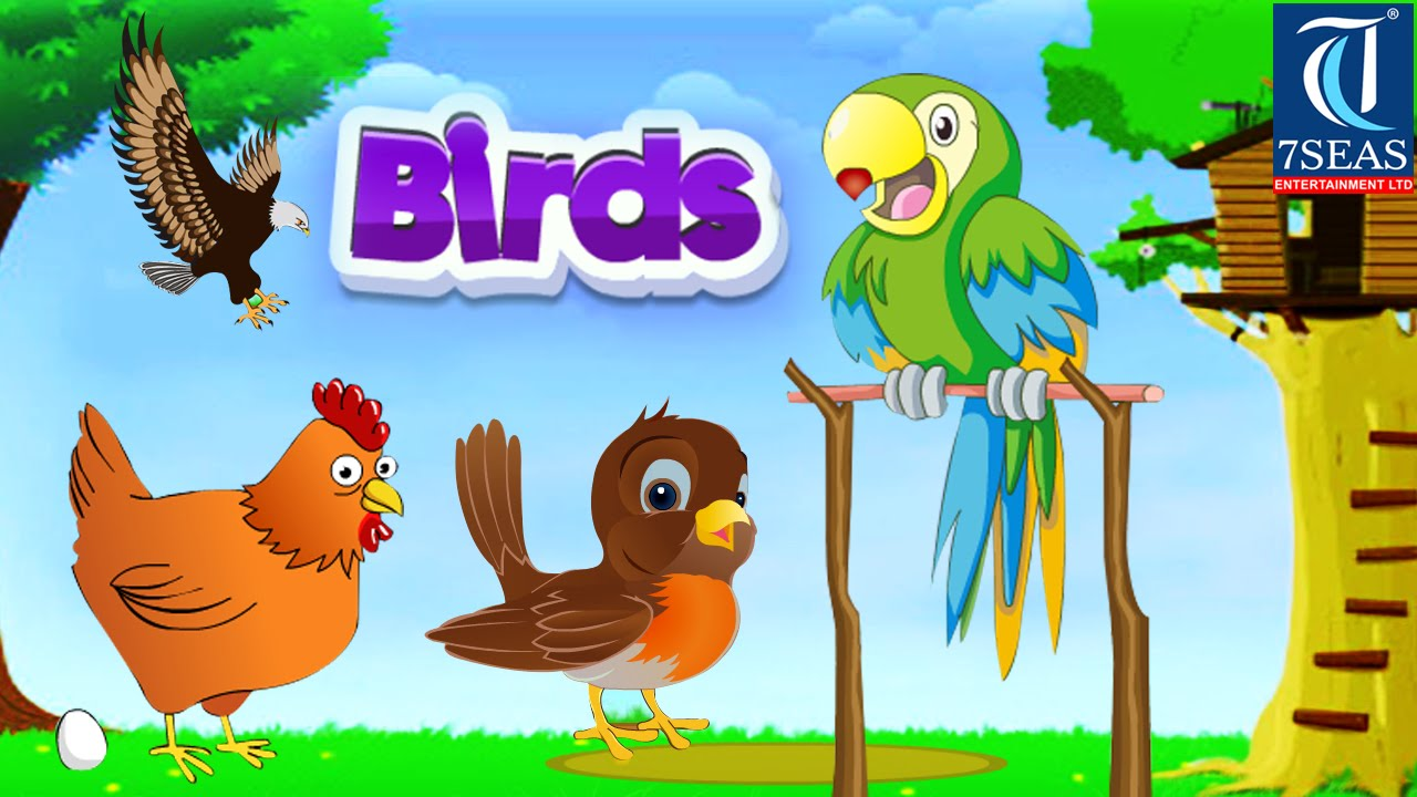 Learn Types Of Birds Animated Video For Kids English Animation Video For Children