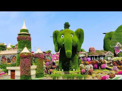 Dubai Miracle Garden 2021