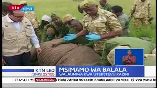 Kifaru mwingine ameripotiwa kufa na kufikisha idadi ya vifaru waliokufa kuwa kumi